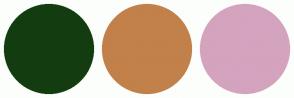 Color Scheme with #133D11 #C2804A #D4A3BE