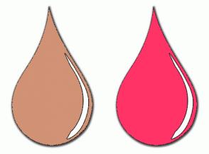 Color Scheme with #D19275 #FF3366