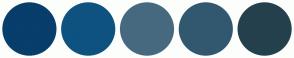 Color Scheme with #073E6B #0E5280 #476980 #325870 #24404D