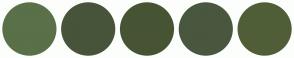Color Scheme with #597049 #475439 #475433 #49573F #505E37