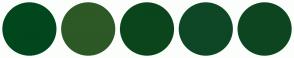 Color Scheme with #00471D #2C5925 #0B451C #0E4725 #0E4521