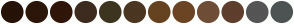 Color Scheme with #261207 #2C1608 #301608 #3D2B1F #3C341F #4B3621 #654321 #6B4423 #6F4E37 #5E3E2C #555555 #4D5353
