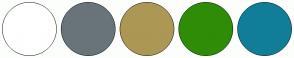 Color Scheme with #FFFFFF #69747A #AD9755 #2F8C07 #117E99