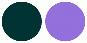 Color Scheme with #003333 #9370DB