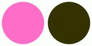 Color Scheme with #FF6EC7 #333300