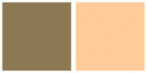 Color Scheme with #8C7853 #FFCC99