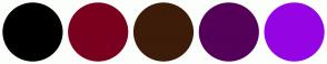Color Scheme with #000000 #7A001F #3D1C0A #550059 #9505E3