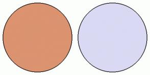 Color Scheme with #DB9370 #D9D9F3