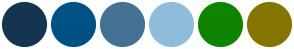 Color Scheme with #153450 #005184 #447294 #8FBCDB #0E8400 #847500