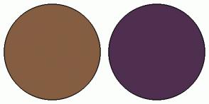 Color Scheme with #855E42 #4F2F4F