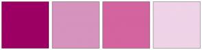 Color Scheme with #9C0063 #D693BD #D3649F #EFD3E7