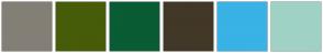 Color Scheme with #847F76 #465C09 #095C34 #423827 #39B2E6 #9FD2C5