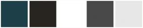 Color Scheme with #1D4048 #282520 #FFFFFF #494949 #E7E7E7