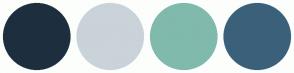 Color Scheme with #1D2F3E #CAD3D9 #80BAAC #3B617A