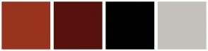 Color Scheme with #97331F #57120E #000000 #C4C1BB