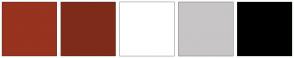 Color Scheme with #97331F #7F2B1A #FFFFFF #C7C5C6 #000000