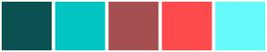 Color Scheme with #0C5151 #02C5C3 #A54F50 #FF4A4D #66FAFA