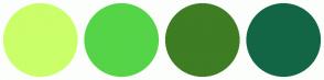 Color Scheme with #CAFF69 #56D448 #3E7D23 #126645