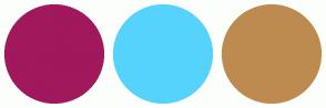 Color Scheme with #A1185C #56D3FC #BD8B4F