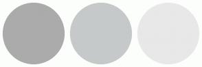 Color Scheme with #ABABAB #C5C9C9 #E8E8E8