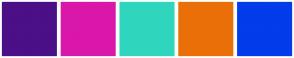 Color Scheme with #4B0F87 #D918A9 #2FD6BD #EB6F09 #023CEB
