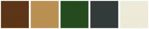 Color Scheme with #5C3617 #BA9052 #254A1E #323B39 #EDEAD8