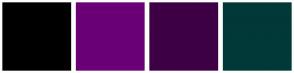 Color Scheme with #000000 #6A0075 #3E0045 #013838