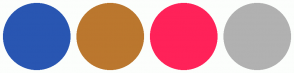 Color Scheme with #2956B2 #BB772E #FF2259 #B1B1B1