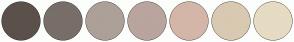 Color Scheme with #5C504B #786E68 #ADA099 #BAA49E #D4B6A9 #D9C9B2 #E6DBC3