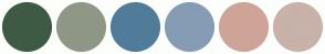 Color Scheme with #3E5A45 #8F9787 #517C99 #859CB4 #CEA498 #C8B2A9