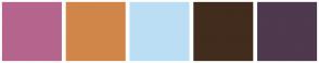 Color Scheme with #B5658D #D18649 #BCDEF5 #422C1D #4E394F