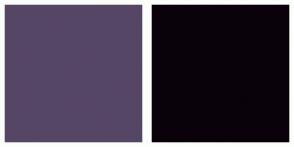 Color Scheme with #564666 #0A010A