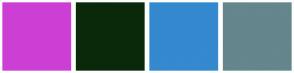 Color Scheme with #CC3FD4 #0A290A #3489CF #64868C