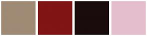 Color Scheme with #9F8A75 #811414 #1A0C0C #E5BECD