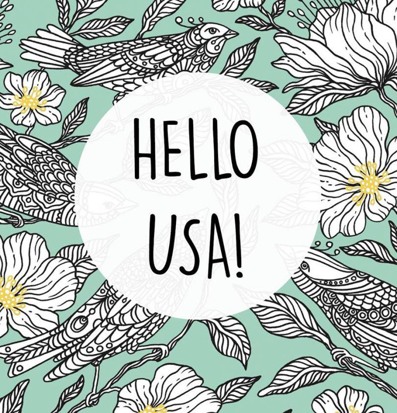 dagdrommar 810x841 - Dagdrommar - Hanna Karizon comes to the USA and beyond!