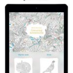 Millie Marotta coloring adventures app