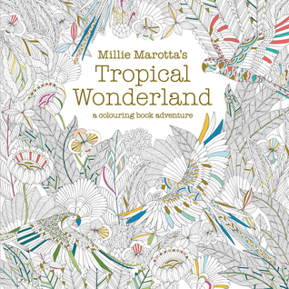 Tropical Wonderland - A Colouring Book Adventure