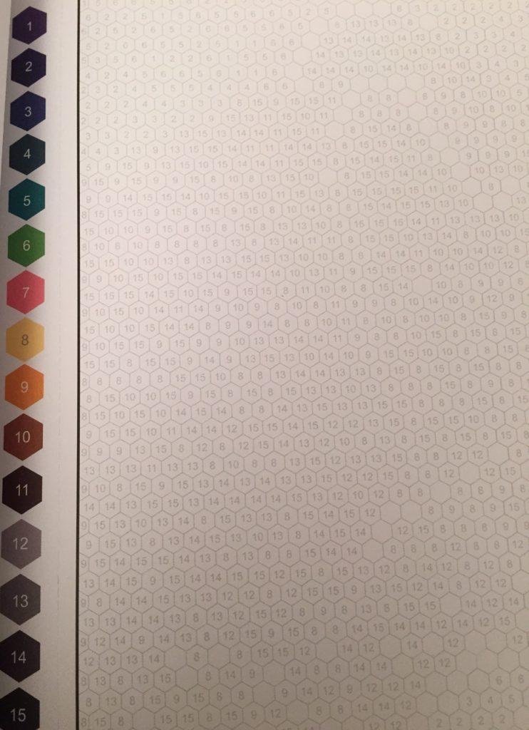 Color Quest Coloring Book