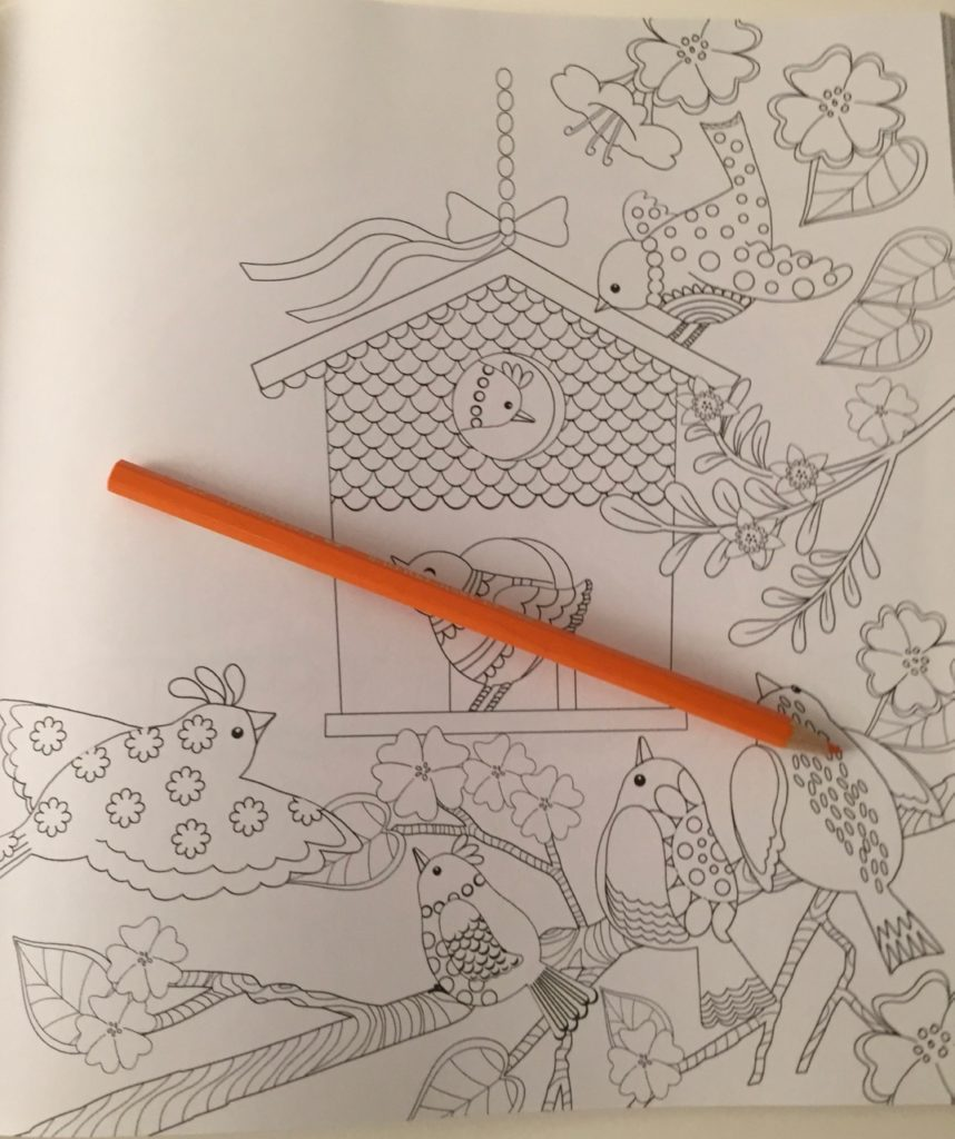 Amazing Grace Coloring Book Review