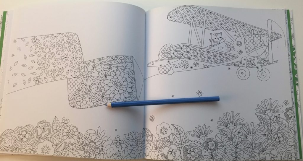 Hidden Nature Colouring Book Review