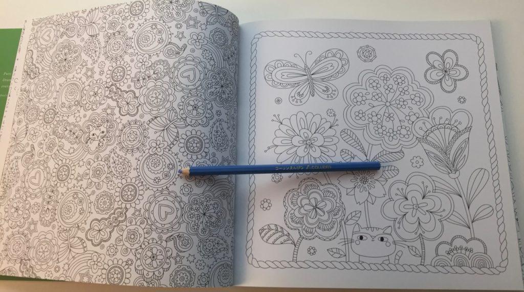Hidden Nature Coloring Book Review