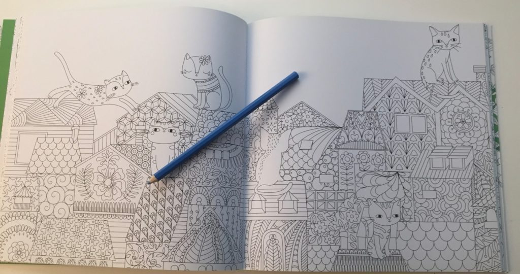 Hidden Nature Coloring Book