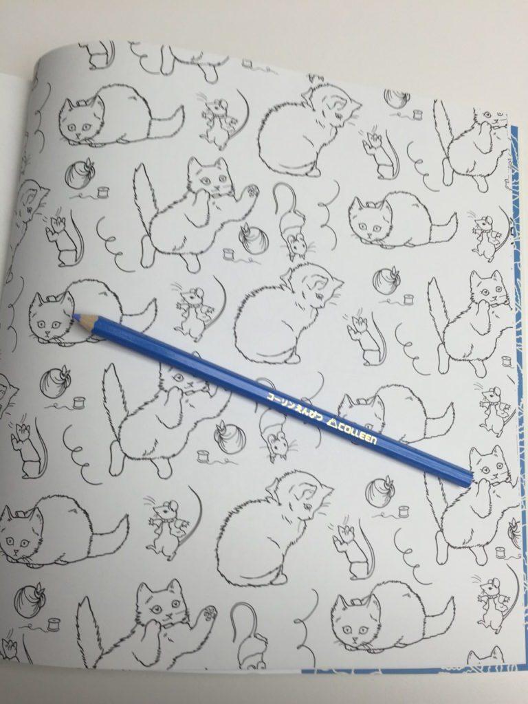 kittensjpg