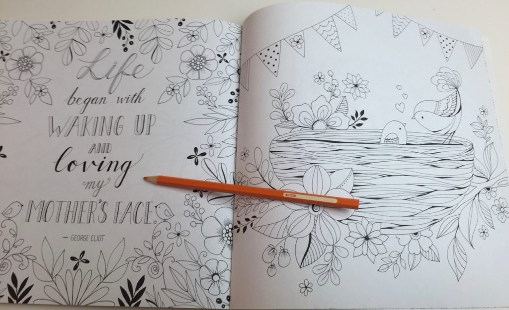 My Mother My Heart Coloring Book - drawings inspired by nature with a touch of whimsy