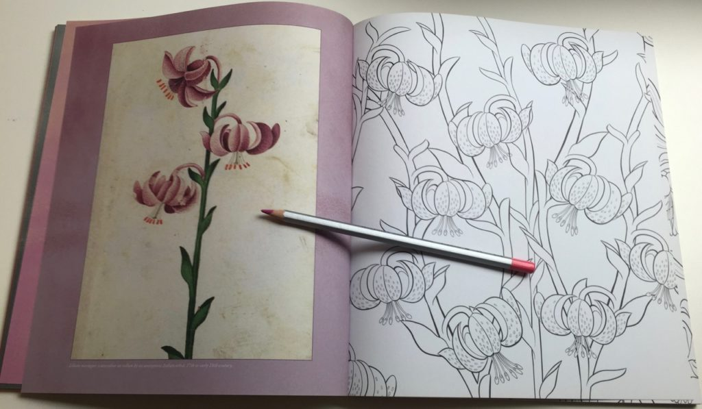There is a large variety of flowers within the book