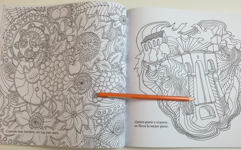 Buena Vista Colouring Book Review
