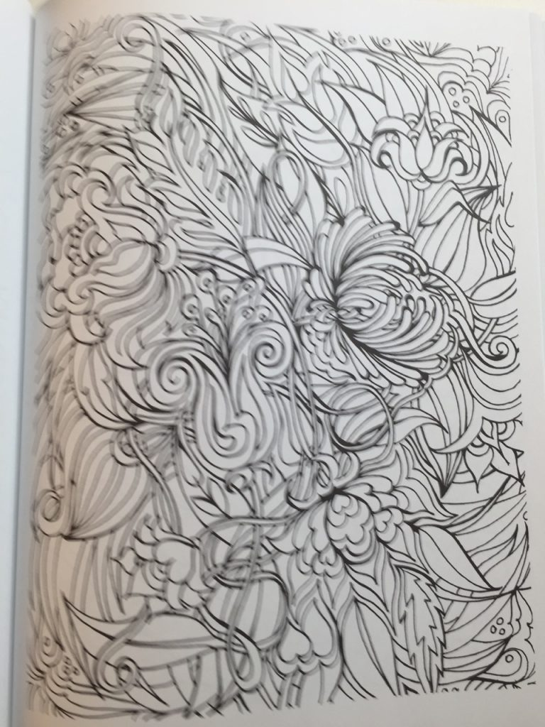 Floral Frenzy Coloring Book Review