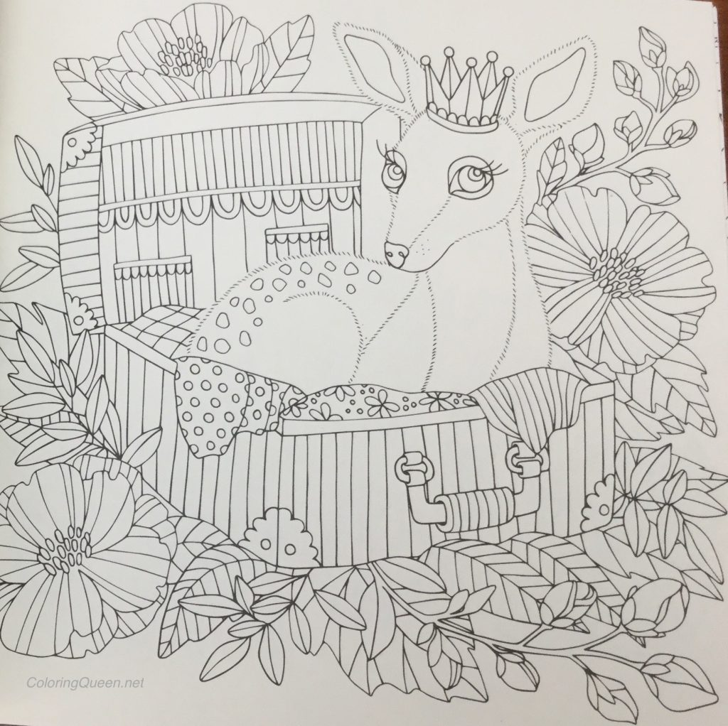 Fairy Tales Coloring Book Review