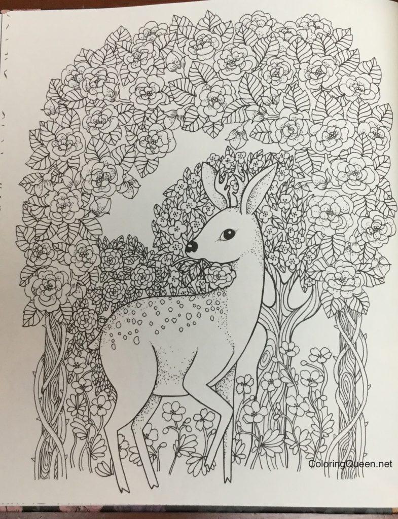 Twilight Garden Coloring Book (aka Blomster Mandala)   Coloring Queen