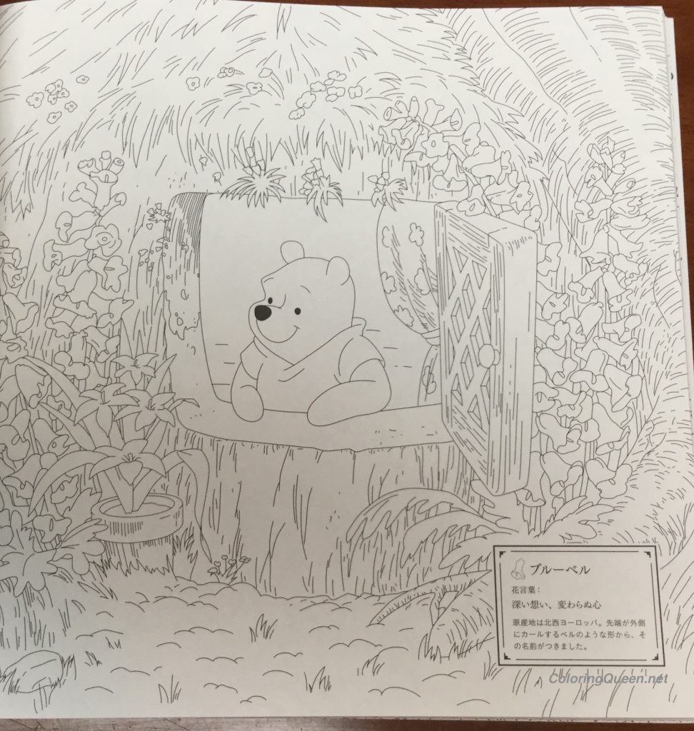 DisneyGirlsWithLittleFriendsColoringBook9 972x1024 - Disney Girls Coloring Book With Little Friends